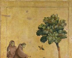 Cursul de Supraviețuire Ortodoxă  - Evul Mediu. Un nou concept de sfințenie